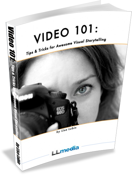 Video 101 eBook Lisa Lubin