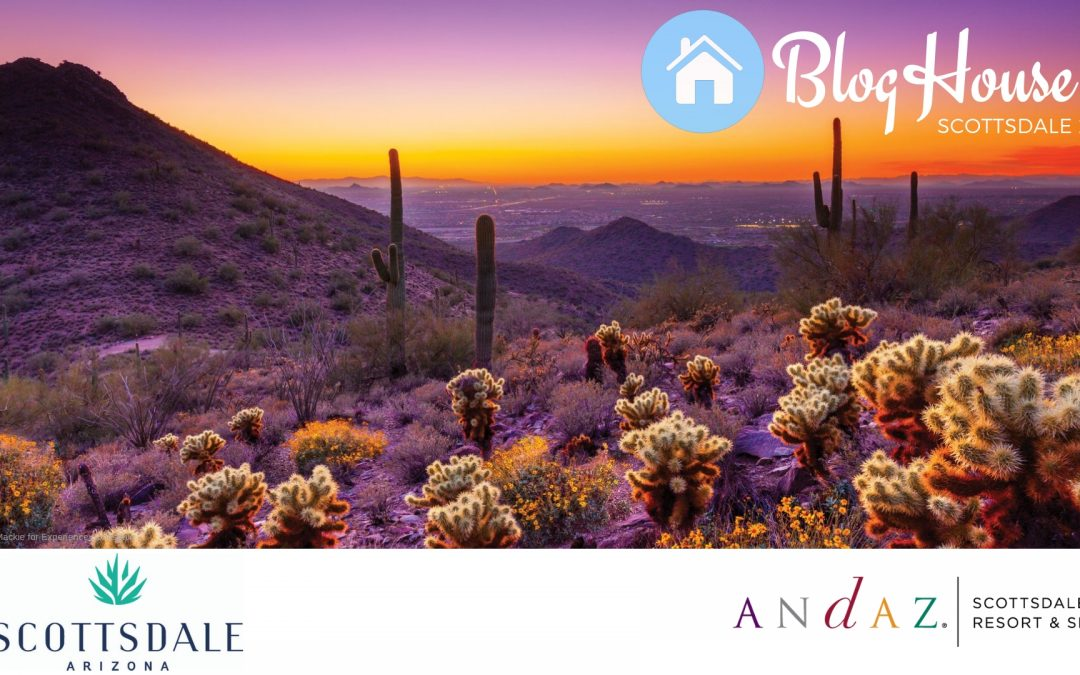 BlogHouse Scottsdale Banner